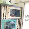 猫ちゃんケージを100均アイテムでリメイク【完成編】